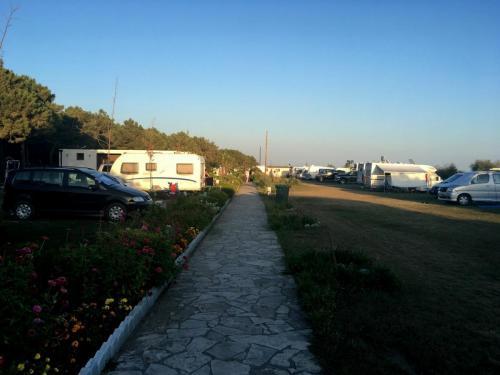 Veilika plaza CG